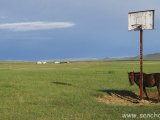 mongolsko_10